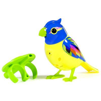 digibirds_azul_amarelo_1