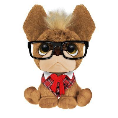 trendy-dogs-thomas-conteudo