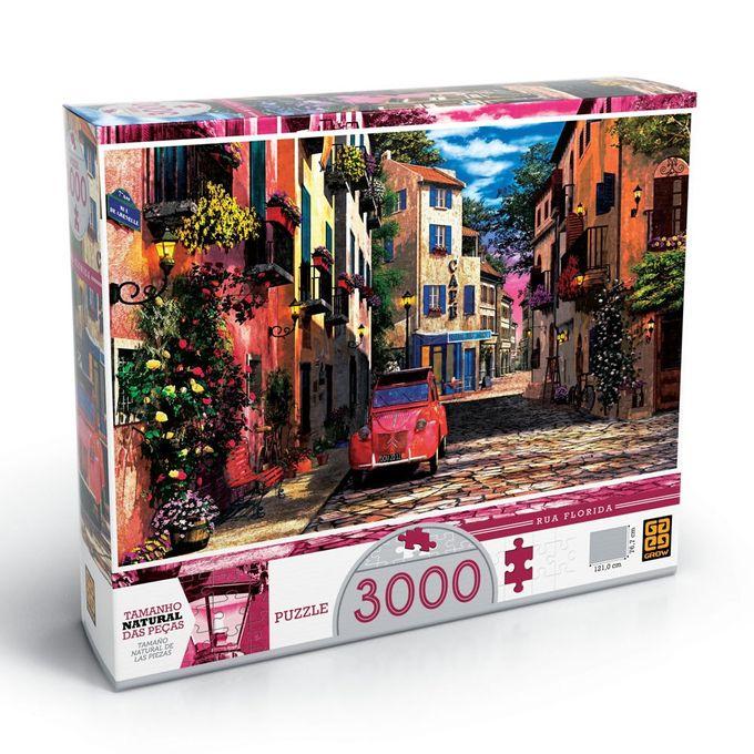 quebra_cabeca_3000_pecas_rua_florida_1