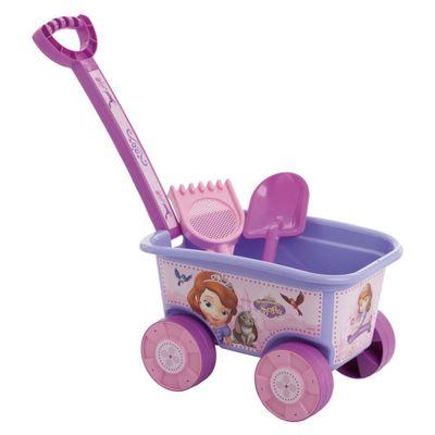 wagon-princesa-sofia-conteudo