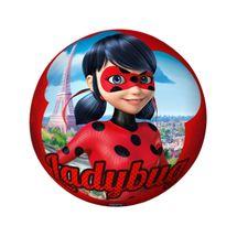 bola-de-vinil-ladybug-conteudo
