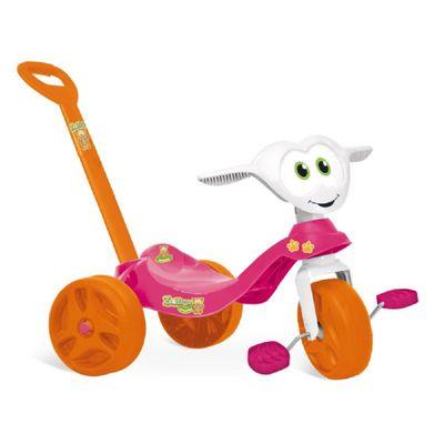 zootico-passeio-pedal-rosa-conteudo