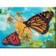qc-500-pecas-borboletas-embalagem
