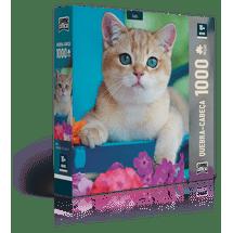 qc-1000-pecas-gato-embalagem