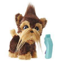 doggo-cabeludo-conteudo