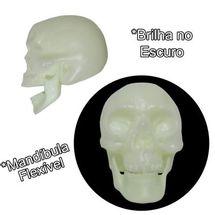 cranio-com-mandibula-neon-conteudo