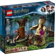 lego-harry-potter-75967-embalagem