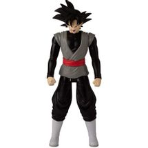 dragon-ball-goku-black-conteudo
